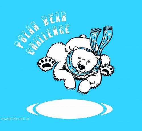 Polar Bear Challenge and Penguin Challenge 2019/20