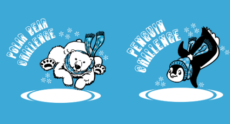 Polar Bear Challenges